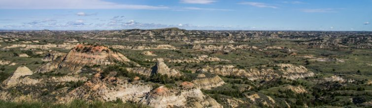 Photos from our Day at Theodore Roosevelt National Park (South)